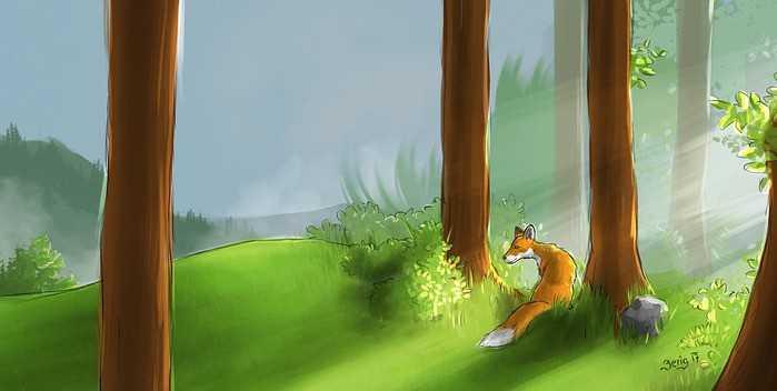 Uma raposa na floresta